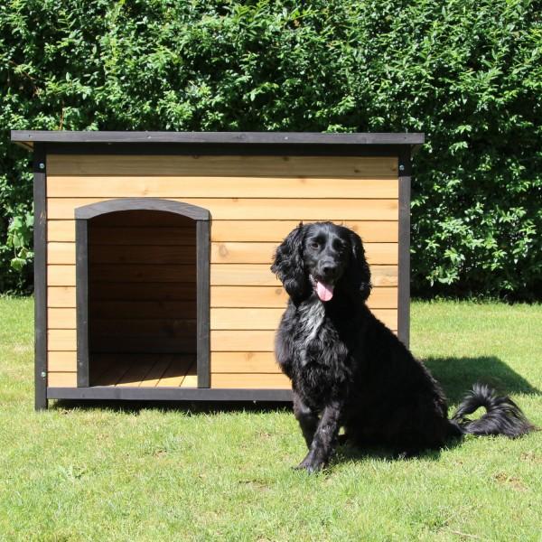 Hundehütte Eddy (219 - XL)